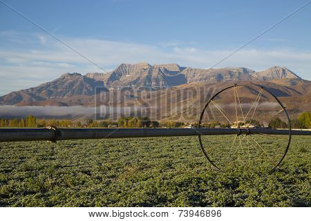 Beautiful Mountain Valley Hay Field With Irrigation Sprinkler