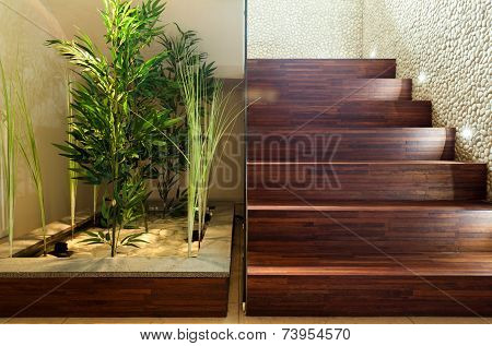 Beauty Plants In Hall