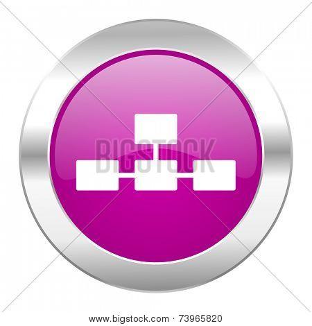 database violet circle chrome web icon isolated