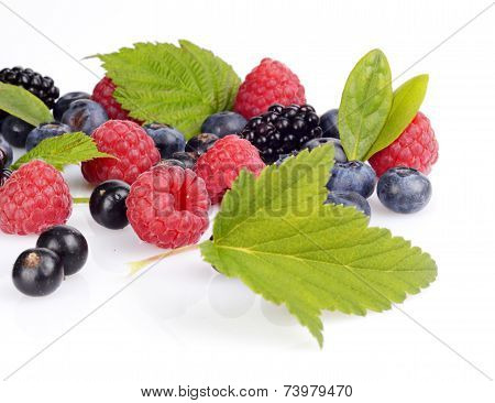 Assortment Of Various Berries Isolated White