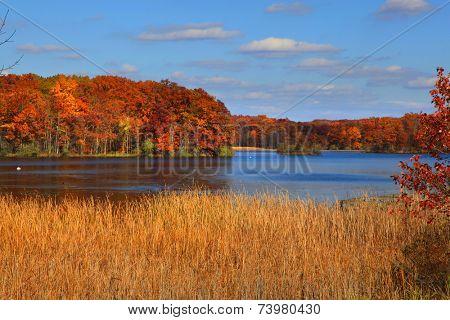 Scenic Kent lake in peak autumn time in Michigan