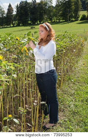 Beautiful red-haired overweight woman on a sunflower field.