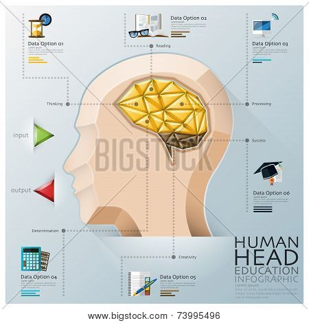 Human Head With Brain Three Dimension Polygon Education Infographic