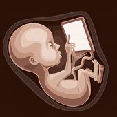 stock photo of fetus  - Fetus is working with a digital tablet - JPG