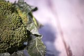 stock photo of cruciferous  - Great green broccoli lying on the wooden table is lure for everyone - JPG