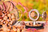 picture of nutcracker  - Nuts in the wicker basket and old nutcrackers - JPG