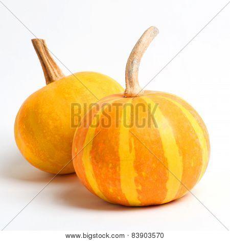 Two Ripe Yellow Pumpkin Closeup