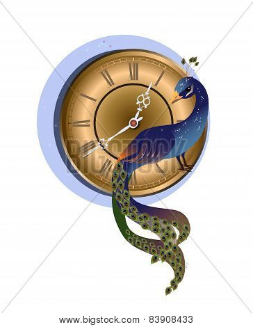 Peacock with clock