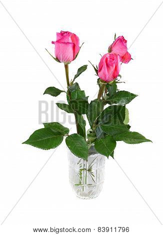 Tree Pink Roses