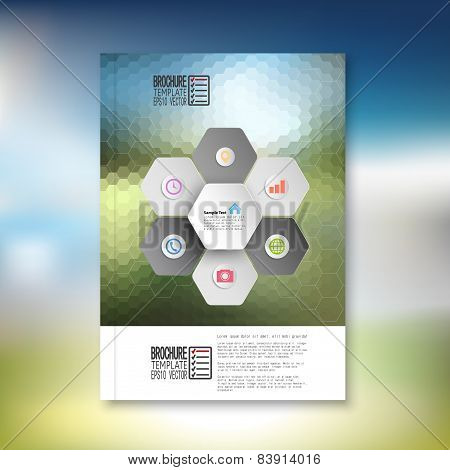 Abstract hexagonal infographic pattern. Brochure, flyer or report for business, template vector