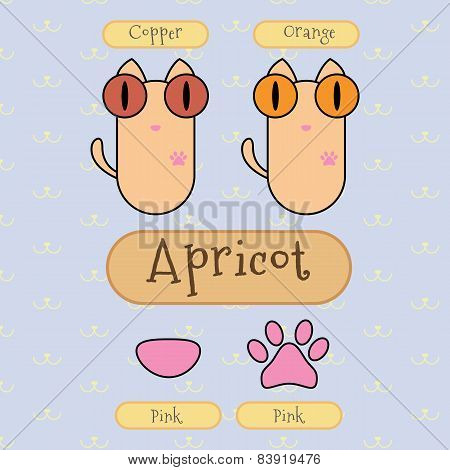 Apricot Color Cat.