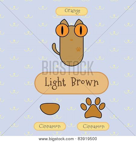 Light Brown Color Cat.