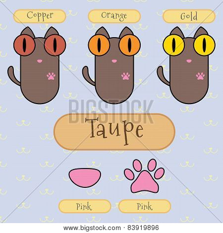 Taupe Color Cat.