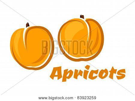 Aroma orange apricot fruits poster