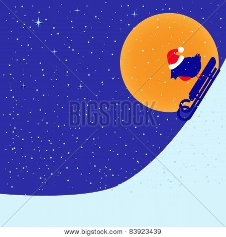 Bullfinch Riding On Sled