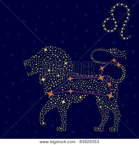 Zodiac Sign Leo Over Starry Sky