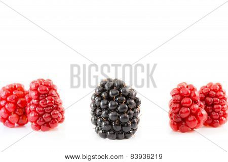 Ripe And Unripe Blackberry Being Different