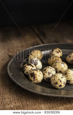 Moody Natural Lighting Vintage Retro Style Image Of Quaills Eggs