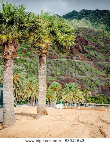 Teresitas Beach In Tenerife. Canary Islands, Spain