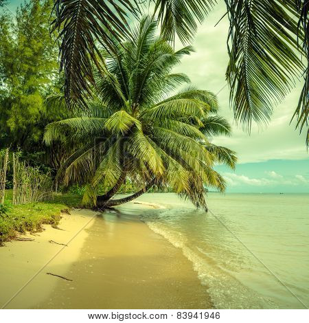 Tropical Beach With, Vintage Style