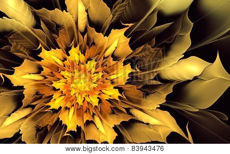 Fiery Yellow-orange Flower