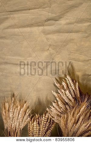 Background With Wheat And Barley