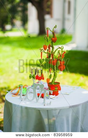 wedding settings for outdoors celebration