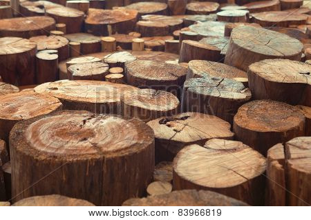 Teak wood stumps background with narrow focus