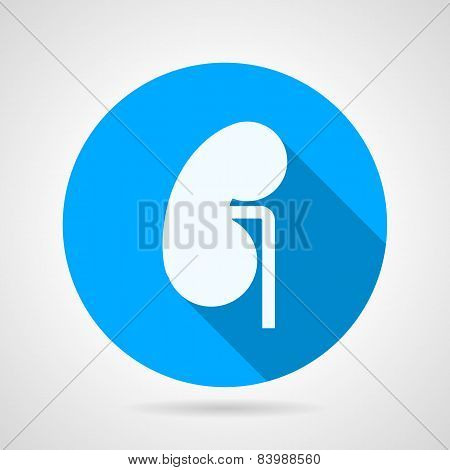 Round vector icon for nephrology
