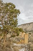 stock photo of sagebrush  - Remnants of a stone building in the ghost town of Peerless, Utah. ** Note: Soft Focus at 100%, best at smaller sizes - JPG