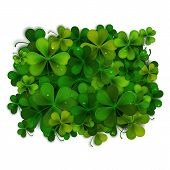 picture of saint patrick  - Saint Patricks Day vector background realistic shamrock leaves - JPG