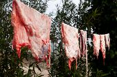 stock photo of slaughter  - Hanging pieces of fat for lard - JPG