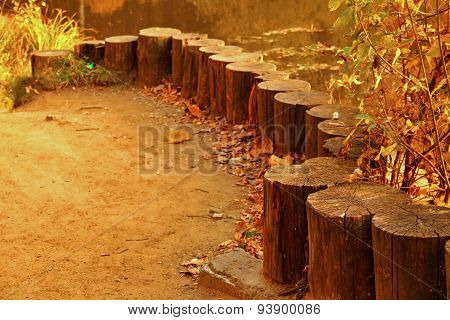 Rank Of Stumps For Rest Outdoors In Autumn