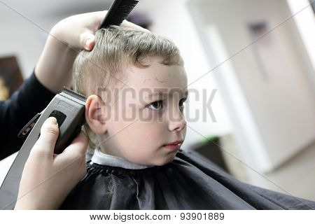 Serious Boy At The Barbershop