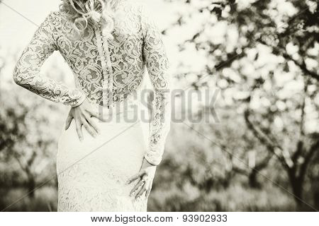 Beautiful Bride Outdoor In The Park, Back View