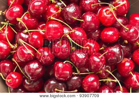 Red sweet cherries with water drops (close up)