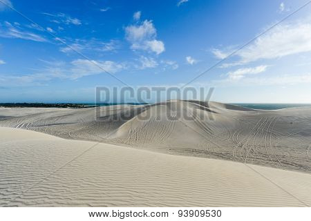 White Sand Dunes Of Nilgen Nature Reserve