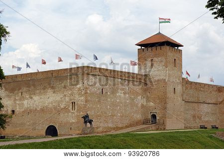 Castle Of City Gyula In Hungary