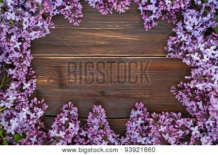 The blossoming lilac in the form of a frame for the text