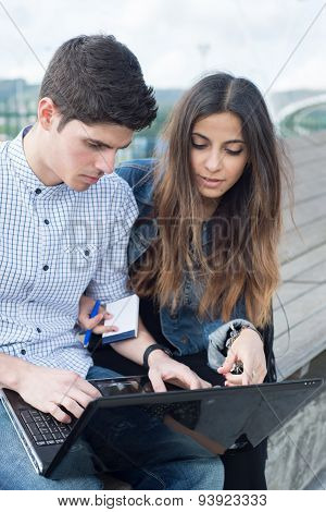 Couple Using And Looking A Laptop In A Park