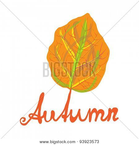 Hand-written word AUTUMN and yellow leaf, lettering. Vector illustration