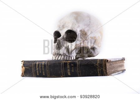 human skull and the book isolated