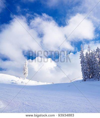 Skiing resort.