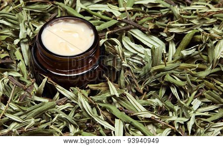 Open Glass Jar Filled With Cream Surrounded By Sea Buckthorn Leaves
