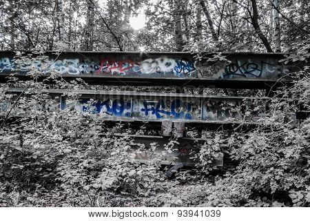 Graffiti in forest