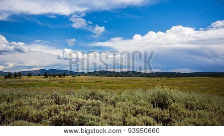 Landscape view in Yellowstone