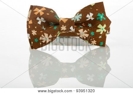 Brown bow tie on a white background. floret