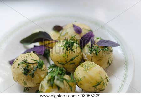 young boiled potatoes with dill