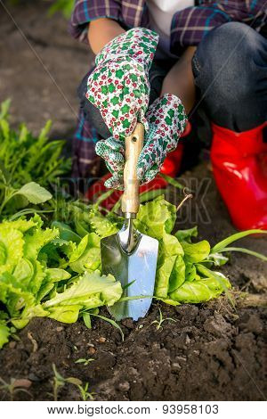 Closeup Of Young Woman Working With Spade On Garden Bed
