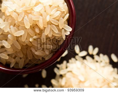 Rice Closeup